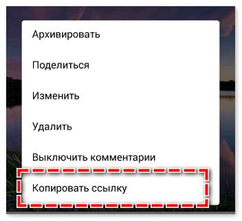 kopirovat-ssylku-2.png