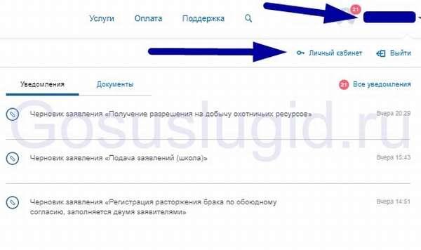 Как сменить пароль на госуслугах в ПК, с телефона и изменить код доступа в приложении