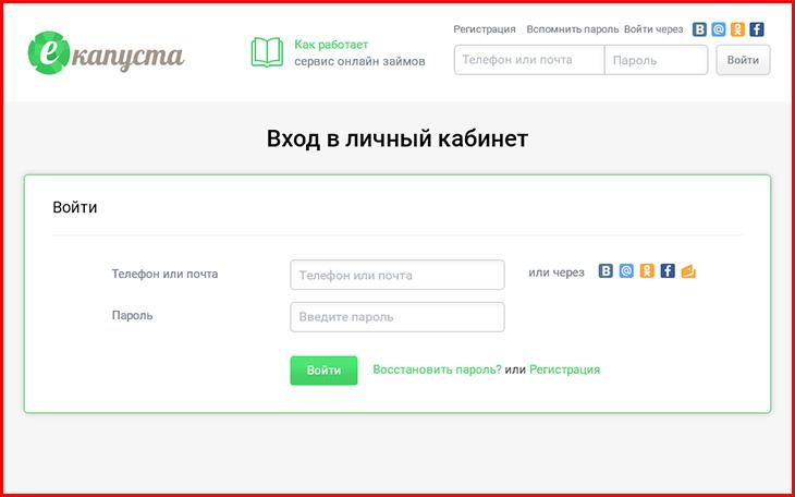 ekapusta_3.jpg