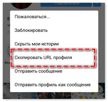 skopirovat-url.png