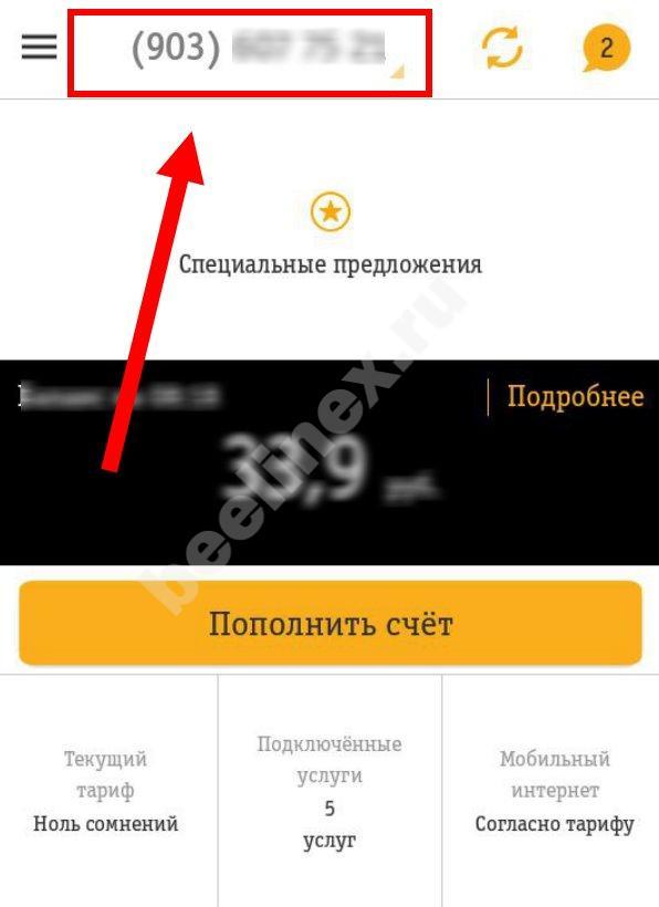 yznat-svoj-nomer5.jpg