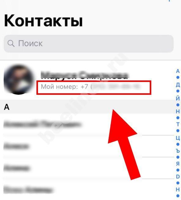 yznat-svoj-nomer-6.jpg