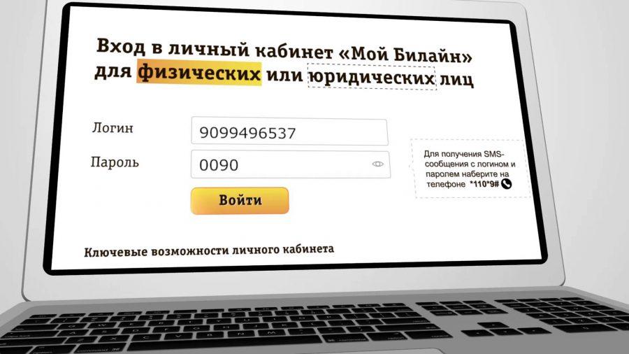 detalizaciya-beeline-2-e1506695459369.jpeg