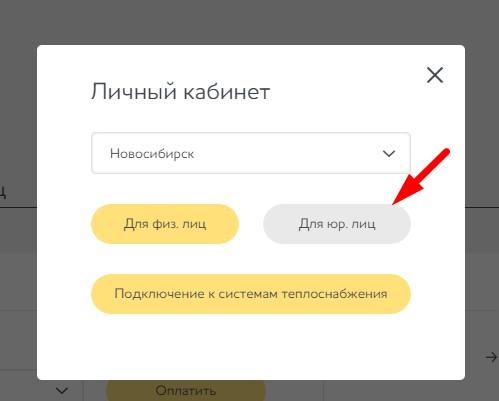 31_lichnyi_kabinet_dlya_yurlic.jpg