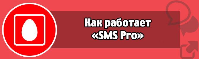 kak-rabotaet-sms-pro-.jpg