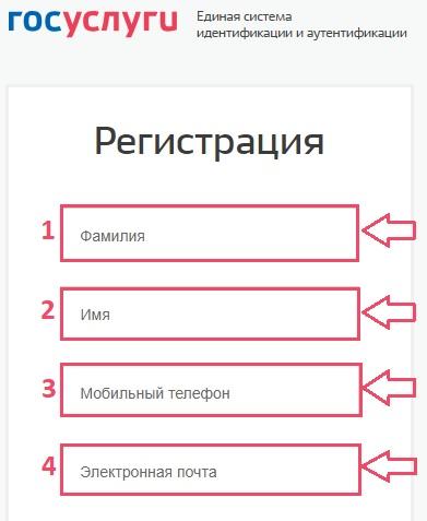 gosuslugi-registraciya.jpg
