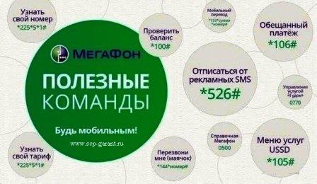 megafon.jpg