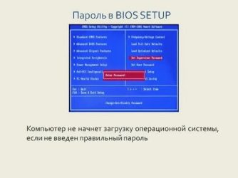 d6651df4a36092ae7f66e295fe790487-334x250.jpg