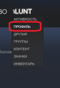 Perehod-k-profilyu-v-Steam-1.png