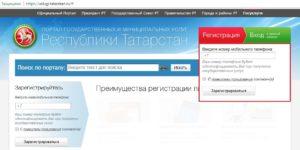 Vhod_v_Gosuslugi_RT_1-300x150.jpg