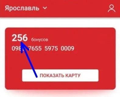 bonusy-v-prilozhenii-1.jpg