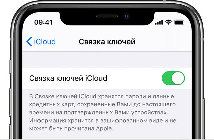 ios12-iphone-x-settings-icloud-keychain-cropped.jpg