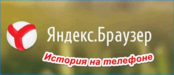 pp_image_9555_d7ri0zoeztistoriya-ya-brauzera-na-telefone.jpg
