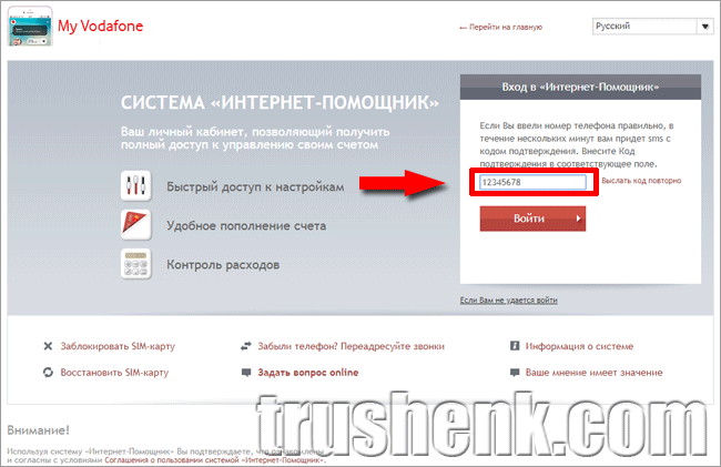 lichny-kabinevodafone-6-1.png