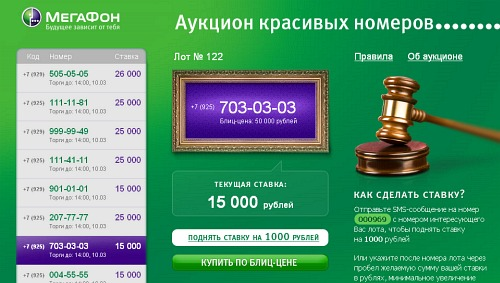 mega-auction-numbers.jpg