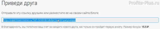 referalnaya_ssilka_expertnoe_mnenie.jpg