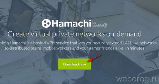 hamachi-5-550x290.jpg
