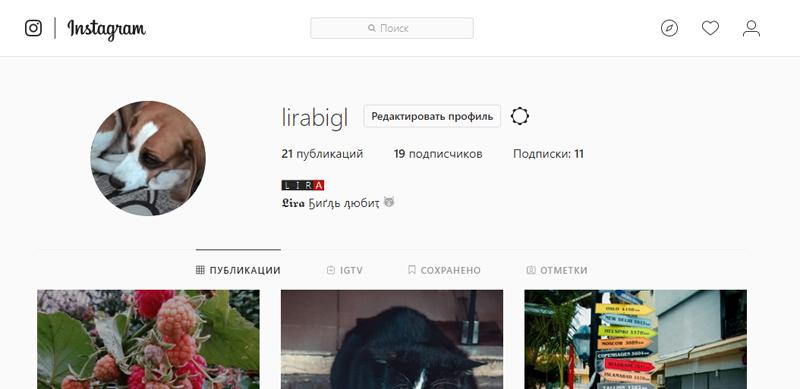 3_kak_uznat_login_v_instagrame.png